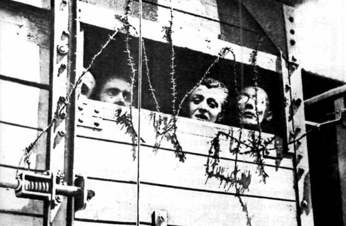 Los deportados eran transportados hasta Mauthausen hcinados en vagones