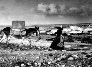 Una campesina tira de su asno en las inmediaciones del pueblo de San Francisco, en Formentera