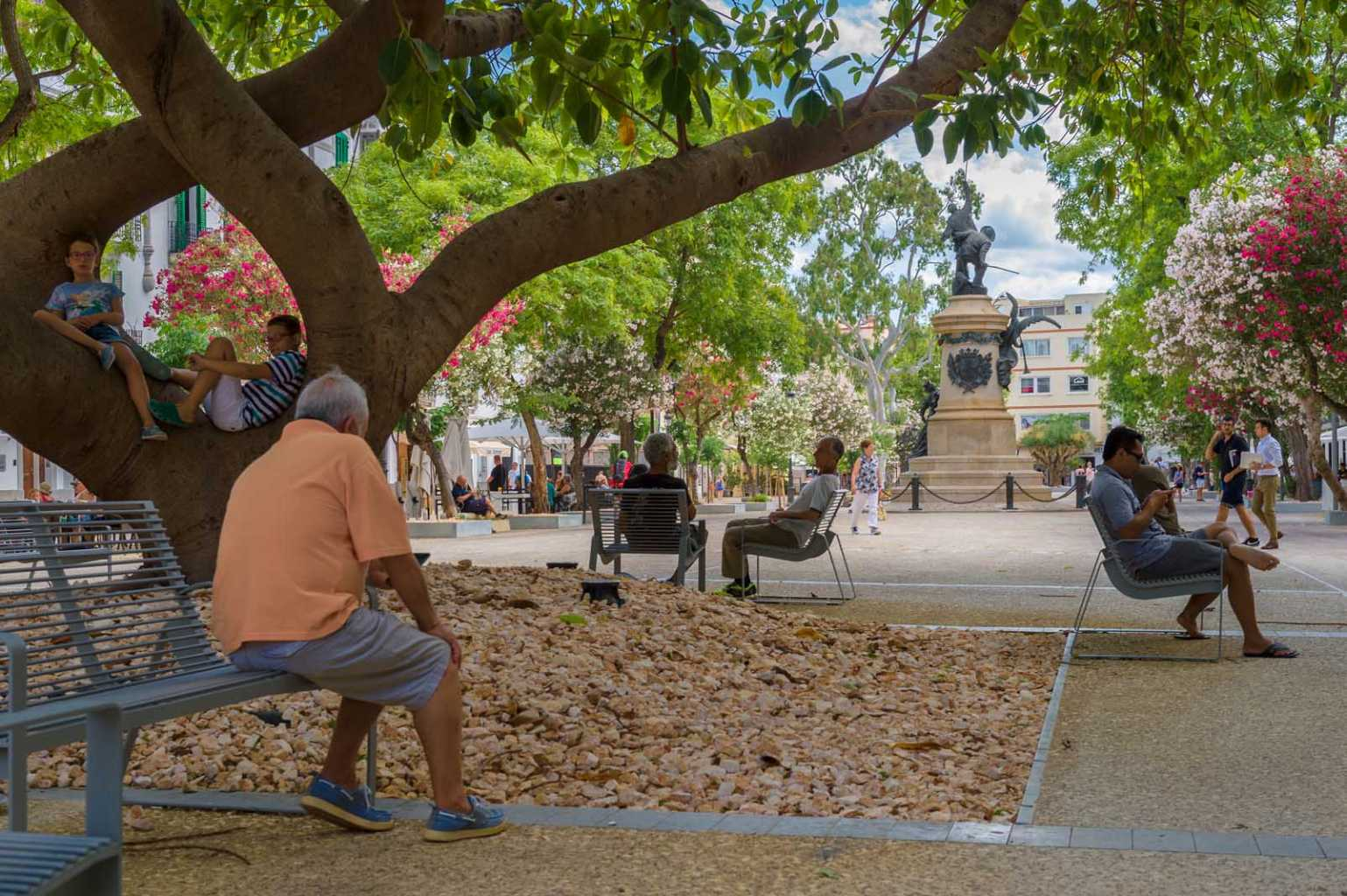 Cerca de un centenar de árboles y plantas nuevas decoran el conocido paseo de S'Alamera. Ajuntament d'Evissa