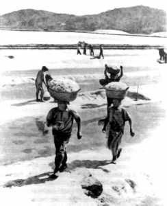 Saliners a principis del segle passat. Català Roca