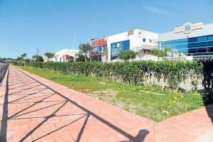 Zona ajardinada de Polígono de Montecristo | Gabi Vázquez