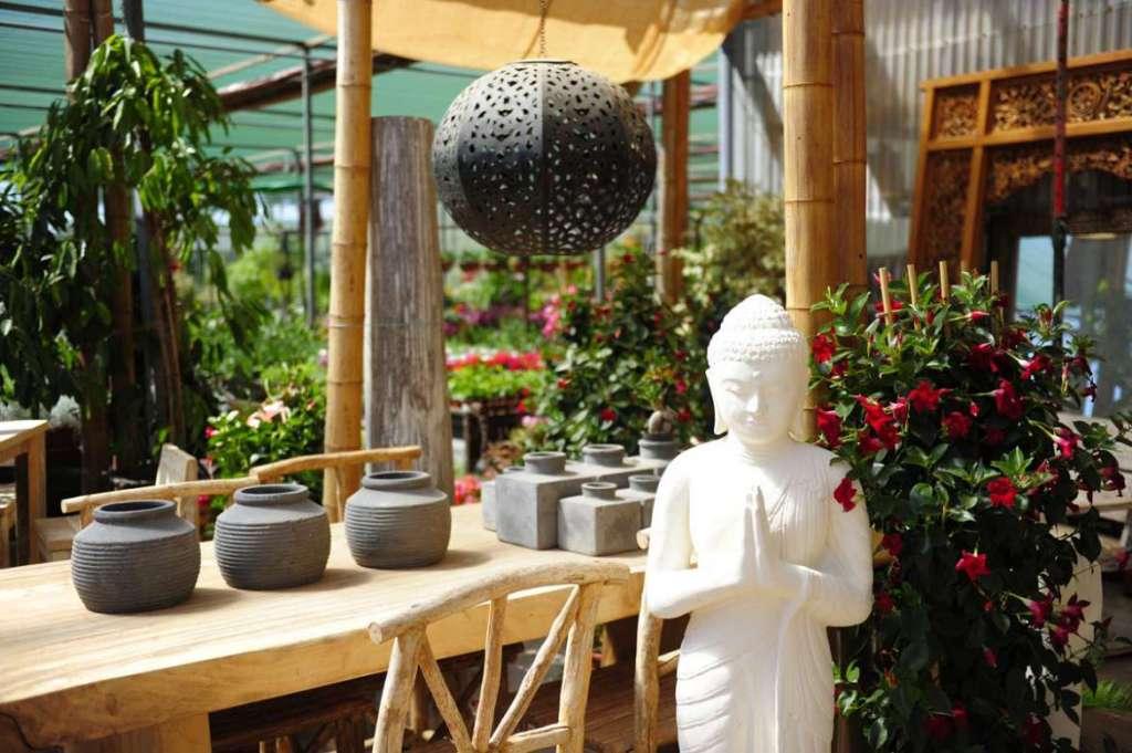 Agua y jardín: Todo lo necesario para un jardín personal y diferente