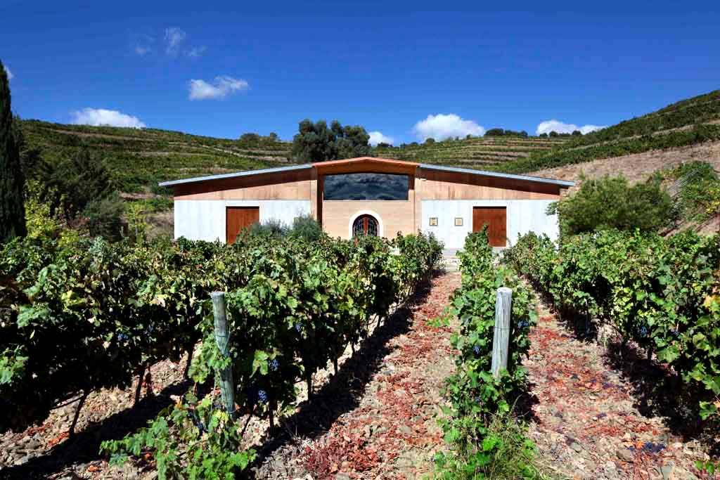 Finca Mas Blanc, en el Priorat, propiedad de Bodegas Pinord.