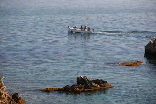 Un 'llaüt' surca el mar en busca de calamares. VICENT MARÍ