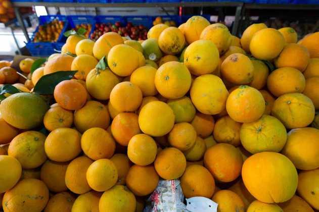 Naranjas ibicencas. SERGIO G. CAÑIZARES