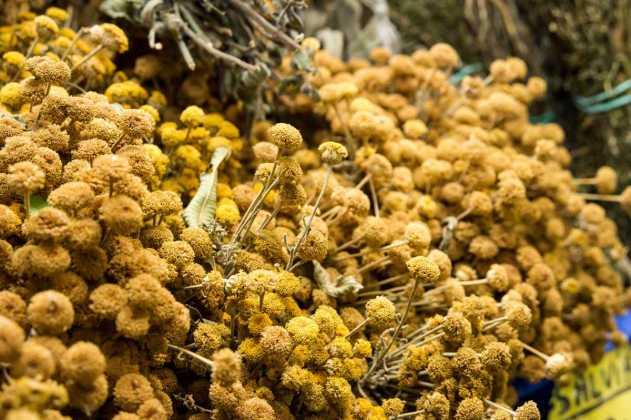 Manzanilla y otras hierbas aromáticas. SERGIO G. CAÑIZARES