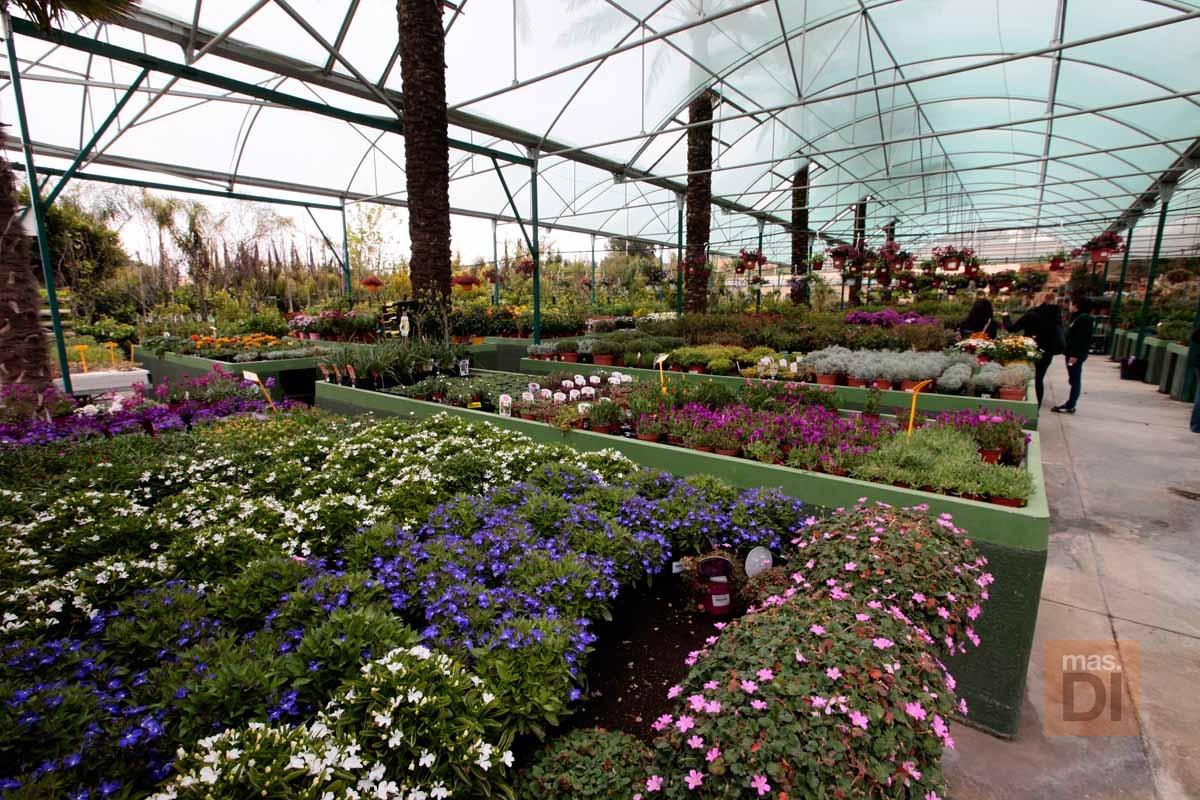 Jardín Mediterráneo Santa Eulalia s.l.: Jardines con encanto  en armonía con el entorno