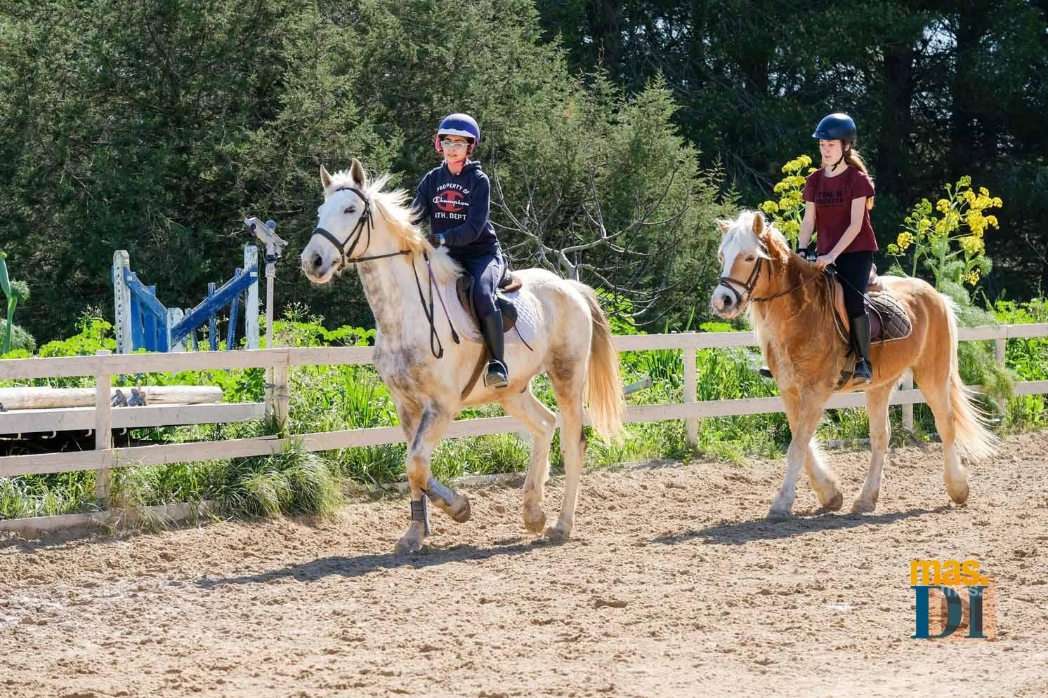 Cuadras Es Puig, montar a caballo, una grata experienca a cualquier edad