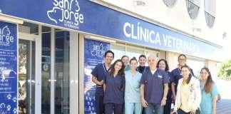 El equipo de la Clínica Veterinaria San Jorge trabaja para conseguir una experiencia placentera para la mascota y el propietario. fotos: sergio g. cañizares Clínica Veterinaria San Jorge