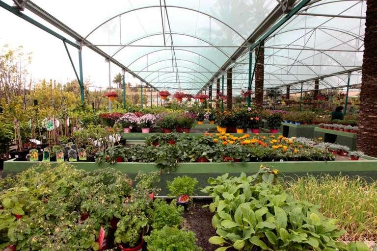 Jardines diseñados hasta el último detalle