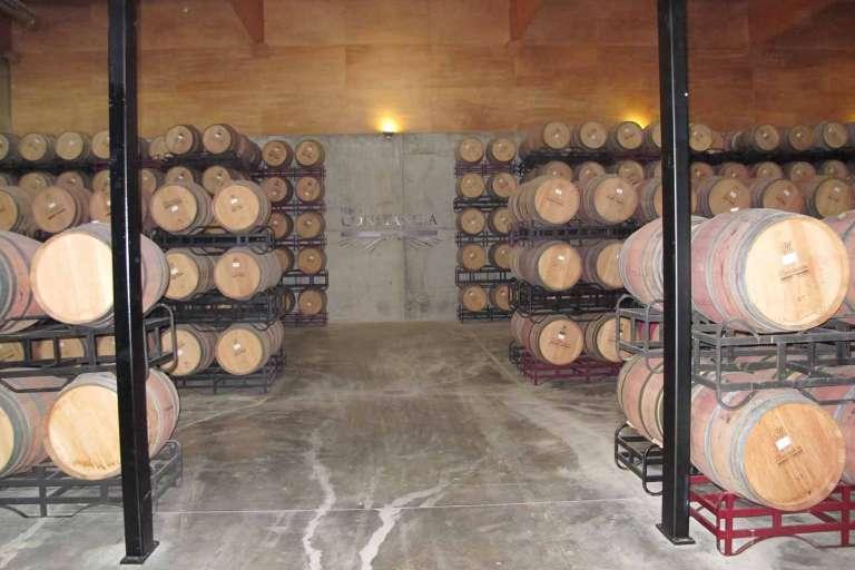 Tecnología punta en vinos de reserva