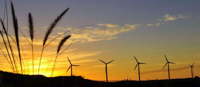 Camino hacia la energía verde