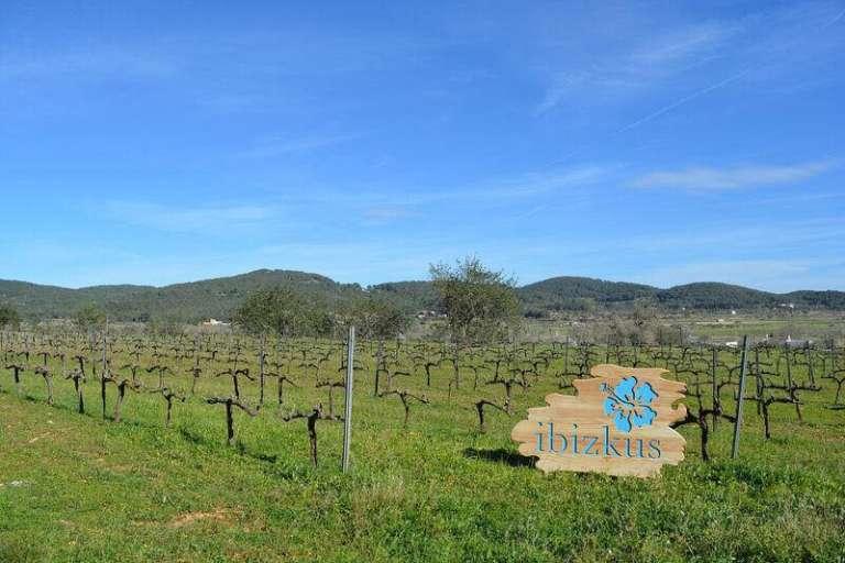 Ibizkus: respeto por la tierra, las viñas y el vino de Ibiza