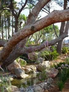 El aprovechamiento del agua es fundamental en los proyectos de permacultura. M.T.