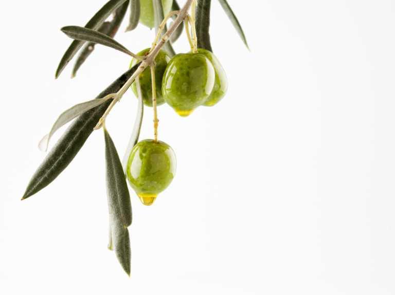 Larga vida a la dieta mediterránea