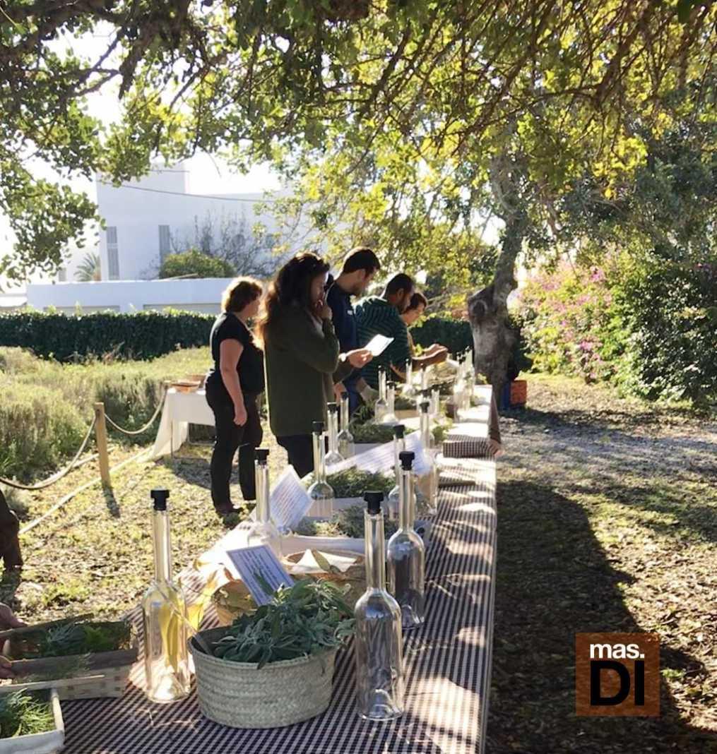 Los talleres se realizan en el jardín botánico de Fluxà Ibiza.