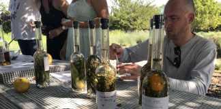 Uno de los talleres de hierbas ibicencas celebrado en el jardín botánico de Fluxà Ibiza.