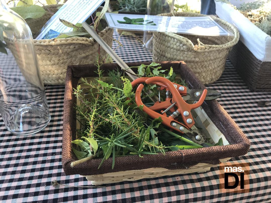 Se utilizan hasta 18 tipos de hierbas.