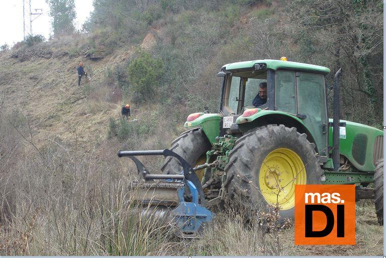 Endesa realiza poda selectiva para minimizar riesgos en la red | másDI - Magazine