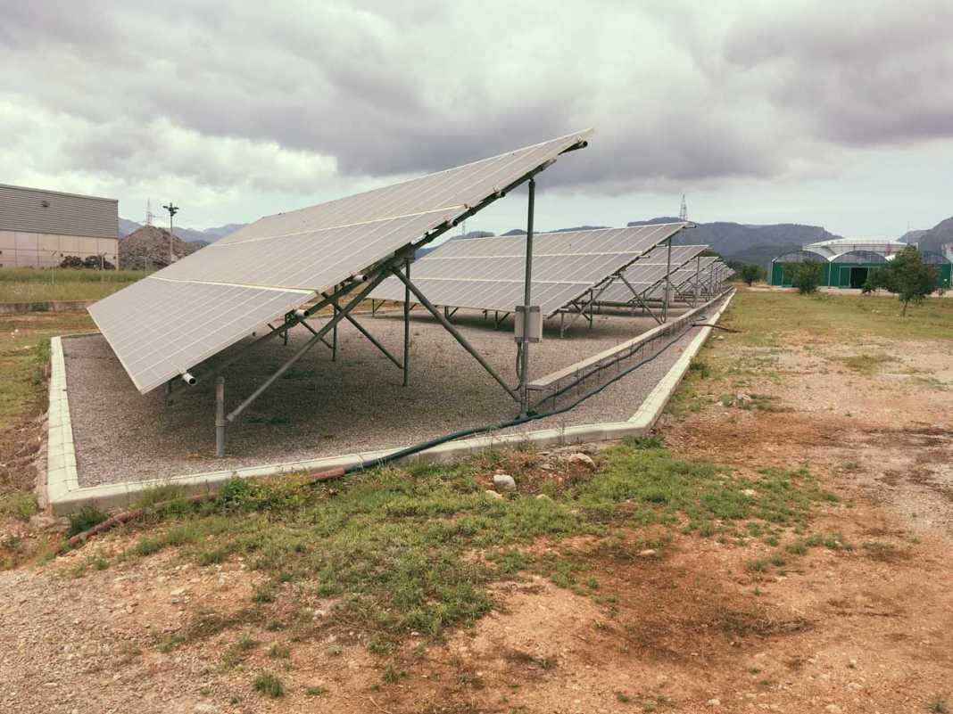 Endesa gestiona 6.983,8 MW de capacidad renovable en España.