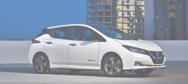 Líder en vehículos eléctricos