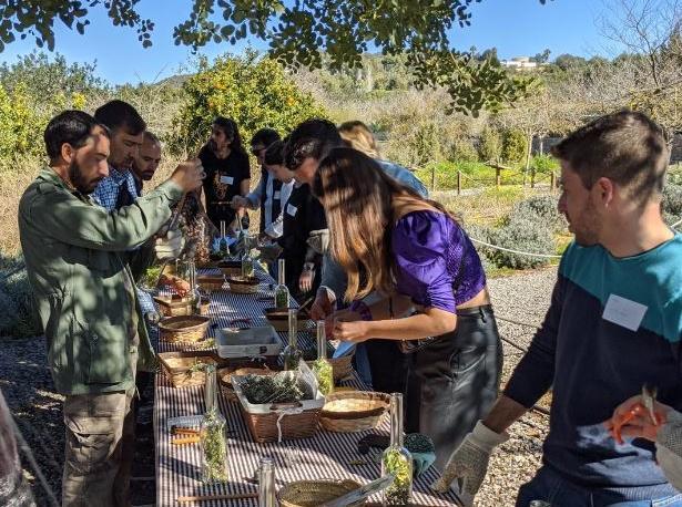 Aprender a hacer hierbas payesas en los talleres de Fluxà Ibiza