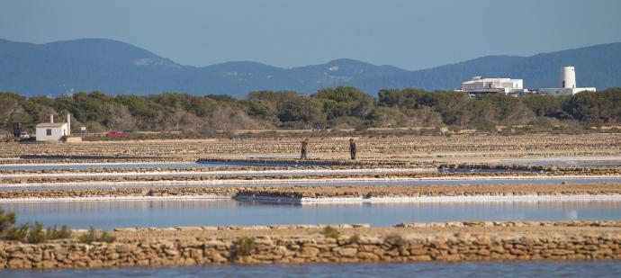 Ibiza y Formentera analizan los avances en torno al medio ambiente