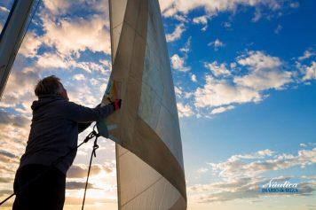 El perfil de navegante actual es más experto sobre el sector.