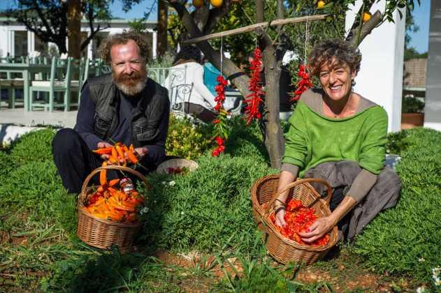 Chili ecológico cultivado por Bárbara y Fritz. SERGIO G. CAÑIZARES