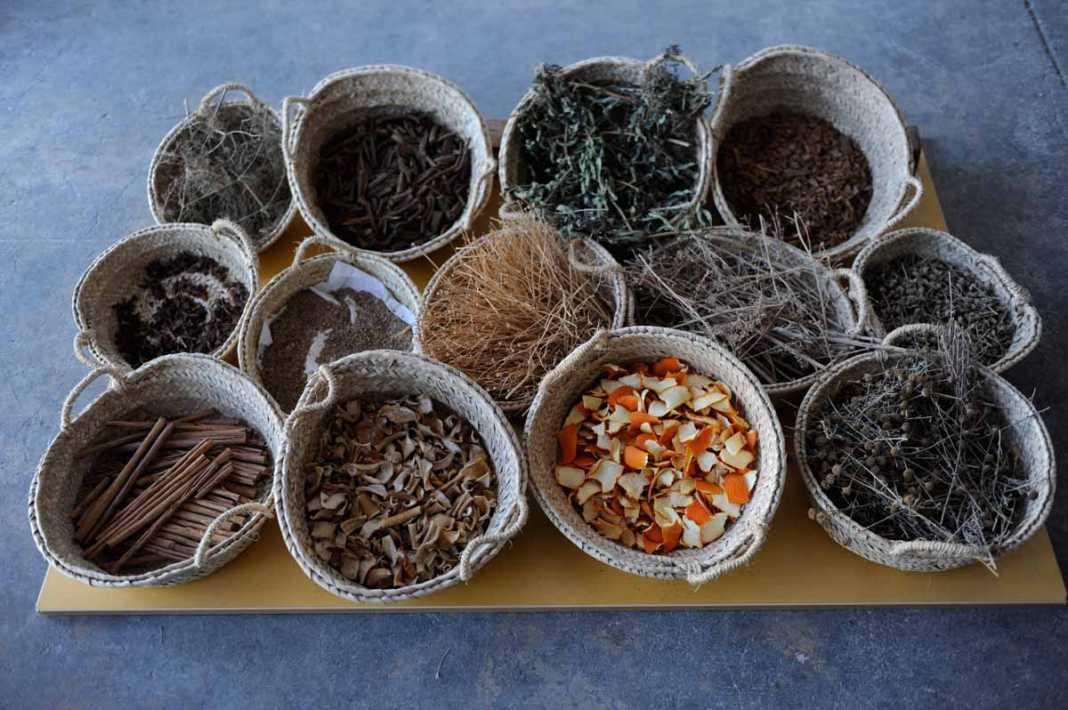 Algunas hierbas necesarias para elaborar el licor de hierbas ibicencas. AISHA BONET
