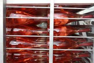 La producción de rosado ha crecido en Ibiza. AISHA BONET