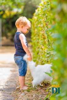 El contacto con animales mejora la autoestima y la motivación | másDI - Magazine