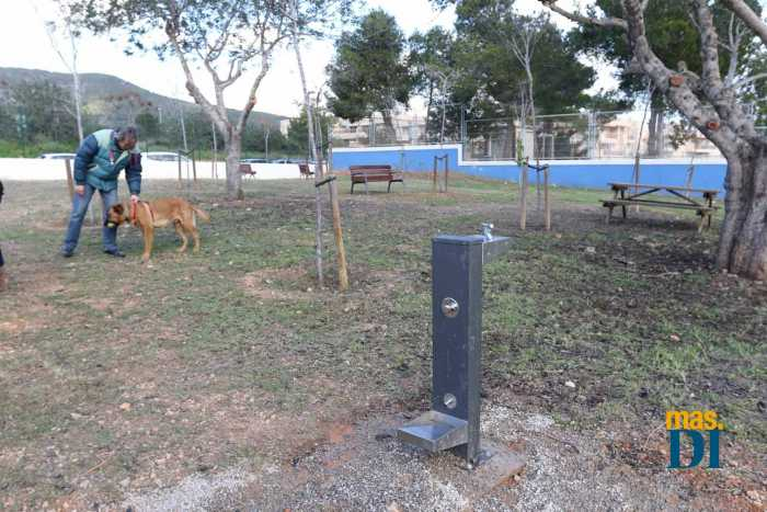Ajuntament d'Eivissa, un municipio amable para las mascotas | másDI - Magazine