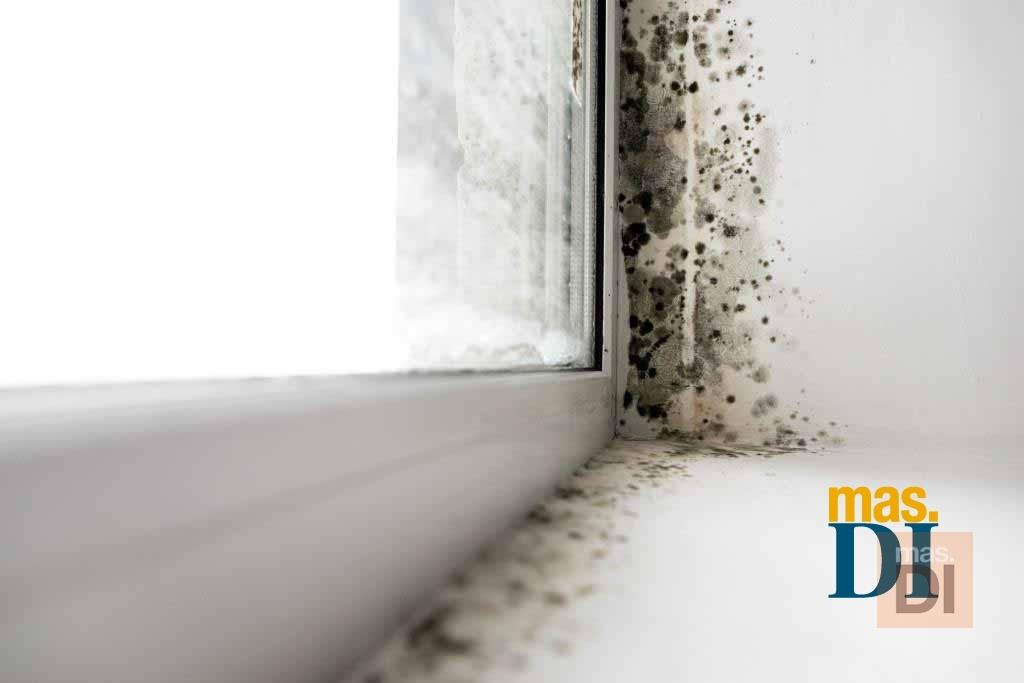 Murprotec c mo tratar las humedades correctamente noticias - Como tratar la humedad en las paredes ...