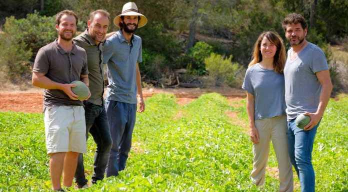 Grupo de Acción Local Leader. El Consell, el grupo Leader y Ecofeixes impulsan la recuperación de este melón de las Pitiüses.
