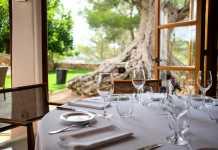 Gastronomía con vistas al olivo milenario en Can Curreu