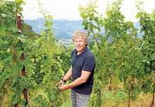 Diesel. Renzo Rosso cultivando la uva en los viñedos donde produce su vino 'Bianco di Rosso'.