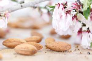 Eivissa sabor. Fin de semana de matanzas saludables | másDI - Magazine