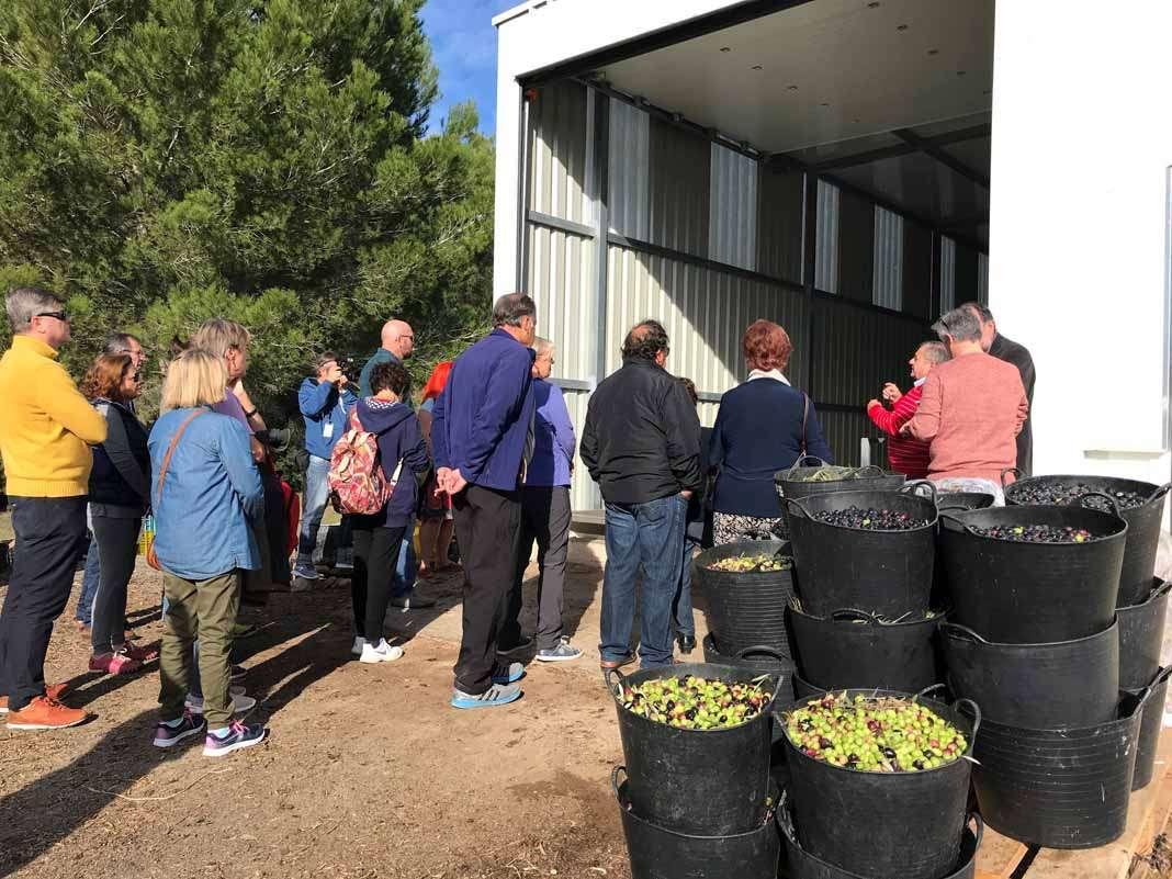 Ibiza Sabor. Talleres. La producción y la calidad del aceite que se elabora en Ibiza despertó el interés de las decenas de personas que se acercaron a la almazara de Sant Joan.