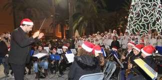 Navidad en Santa Eulària del Río. El gran árbol decora ya la Plaza de España.