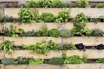 La imaginación y creatividad son elementos necesarios a la hora de redecorar un jardín.
