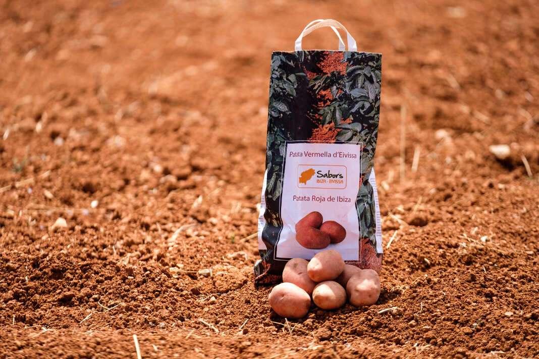 La auténtica patata roja de Ibiza se etiqueta con el distintivo 'Sabors'.