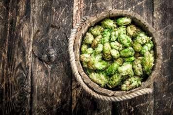 cada cerveza artesanal es única gracias a los matices y detalles durante su producción.