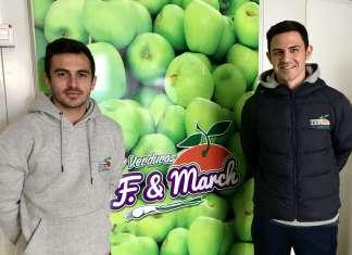 distribución de producto local en Ibiza.
